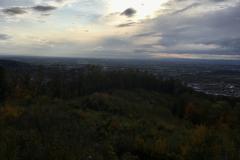 Aussicht vom Hirschkopfturm zur Stadt Weinheim