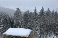 Ausblick vom Hirschkopfturm im Winter