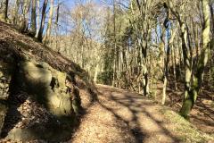 Rundwanderweg durch die Zimmerholzwiesen Dossenheim