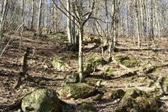 Blick vom Bärenstein hinauf zur Klause
